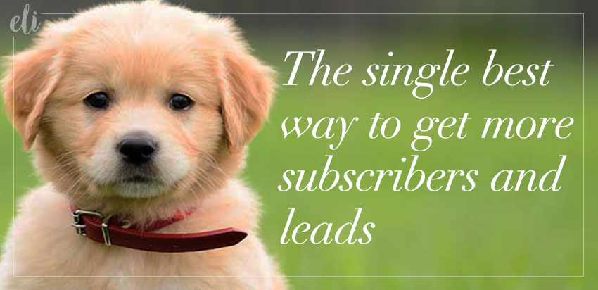 Get more leads and subscribers