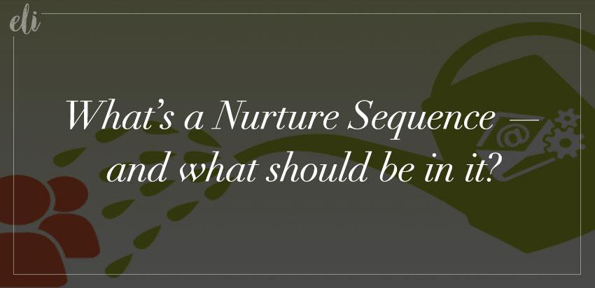 Nurture Sequence